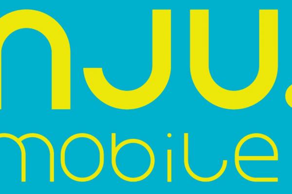nju logo