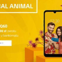 LG Q60 w Play – zwrot 200 zł