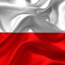 Polskie smartfony